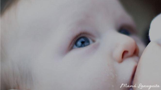 breastfeeding lactancia materna breastfeed