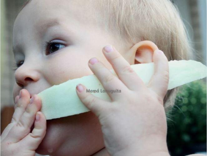 mi hijo no quiere comer mi bebe no come blw baby led weaning alimentacion complementaria bebe comiendo melon